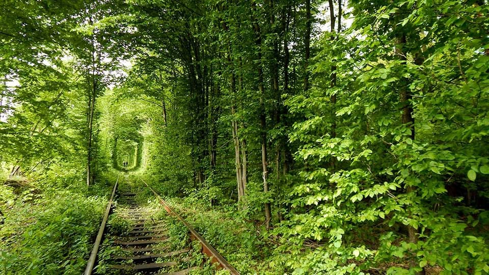 "The ""Tunnel of Love"", Rivne region"